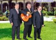 Serenata romantica trio cortes, musica de cuerda para toda ocasion