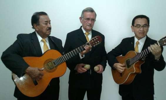 Serenatas para toda ocasion, trio kairos, musica de cuerda en vivo