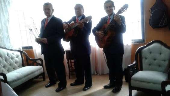 Serenatas con musica de cuerda, trio bogota